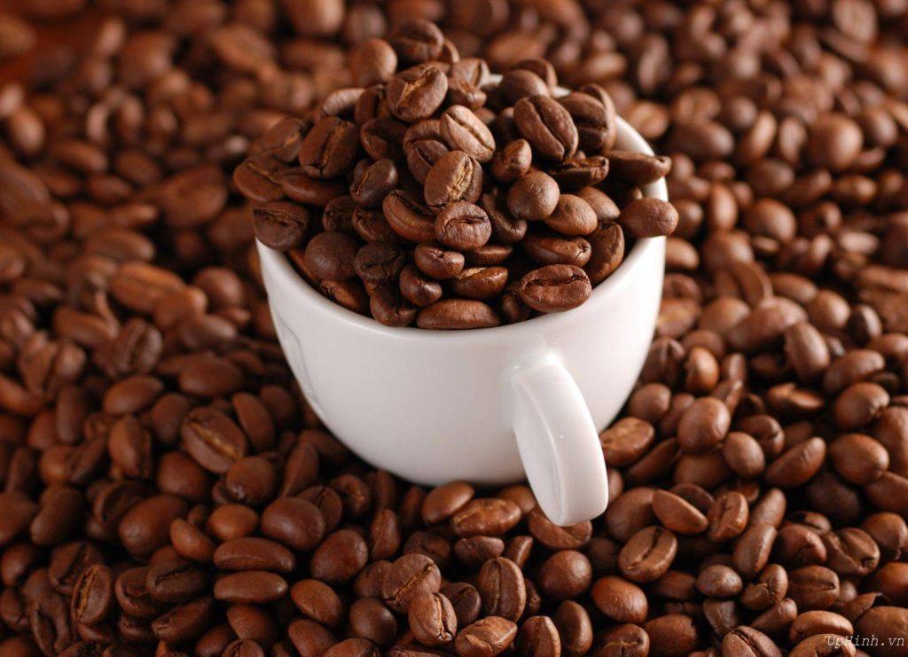 cà phê hạt bột