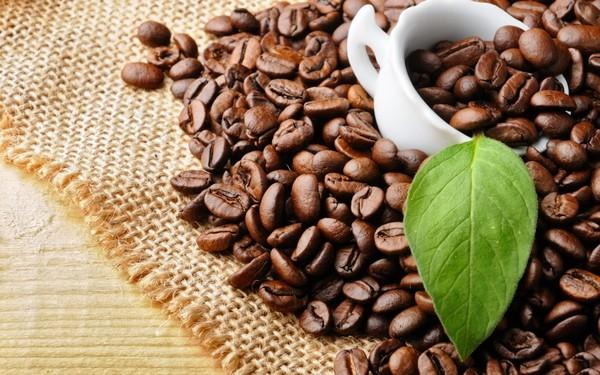 các loại cà phê hạt nổi tiếng tại việt nam