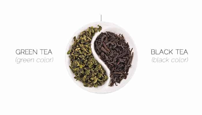hồng trà và lục trà khác nhau như thế nào