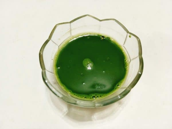 rau câu trà xanh
