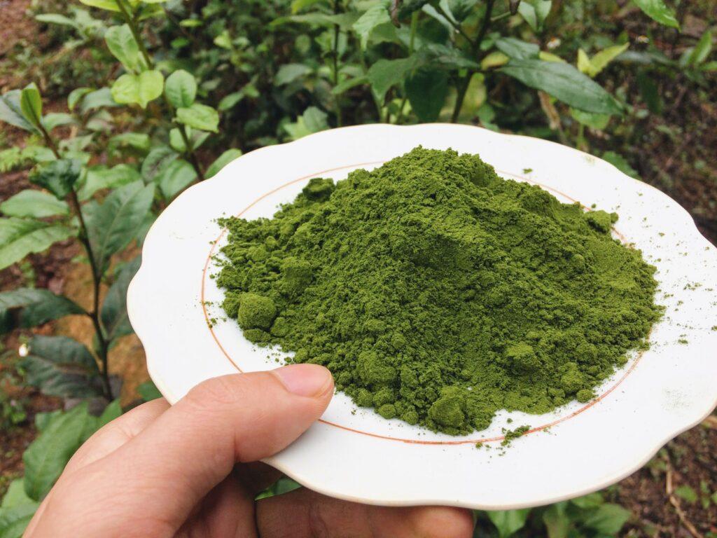 Bột trà xanh bao nhiêu tiền 1 kg?