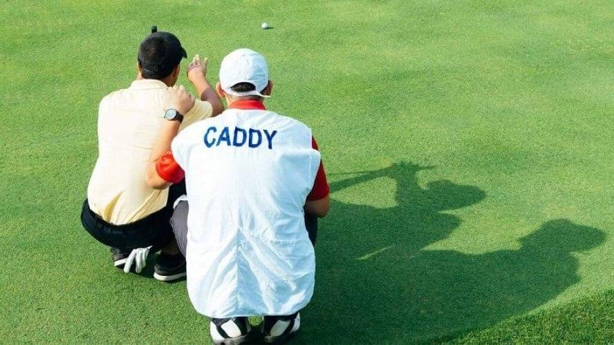 Caddy là gì Những thông tin hữu ích về Caddy