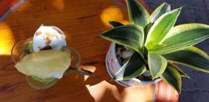 Kem bơ sầu riêng bí đỏ: Cách làm ngon và dễ dàng