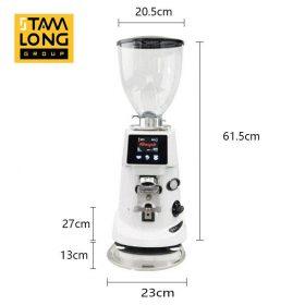 Máy xay cà phê Fiorenzato F64E giá rẻ tại TPHCM