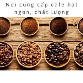 Hạt cà phê Tân Long loại 3/ 1kg